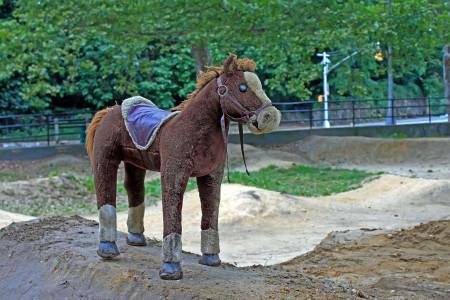 Little Horsey